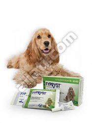Fypryst  1,34 ml (10-20kg) kutya 1 pipetta