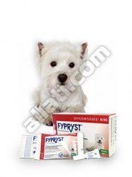 Fypryst  0,67 ml (2-10kg) kutya 1 pipetta Hatóanyag: Fipronil