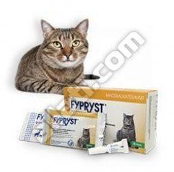 Fypryst  0,5 ml macska 1 pipetta  Hatóanyag: Fipronil